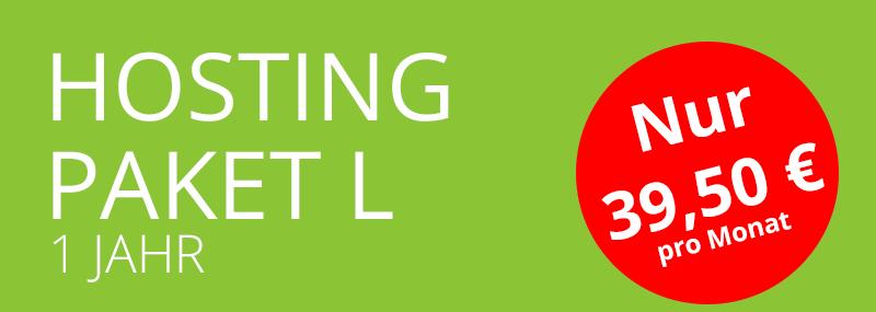 hosting-paket-l
